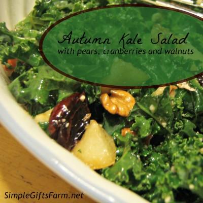Autumn Kale Salad