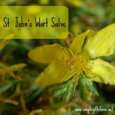 St.John's Wort Salve